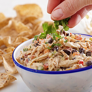 Easy Chicken Dips